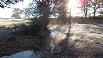 Petit affluent du Clain restauré; déc. 2013
